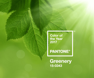 pantone chooses greenery as color of the year 2017